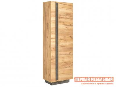 Распашной шкаф  1 дв Арчи 10.05 Дуб золотой craft / Камень темный Моби. Цвет: светлое дерево